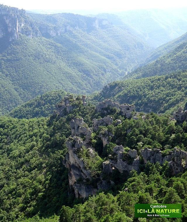 55- mountains france causses cevennes