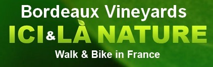 walking biking tours holidays Bordeaux