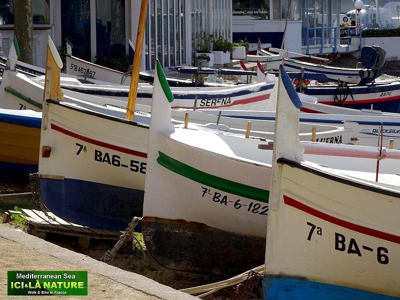 03-spain fish boats