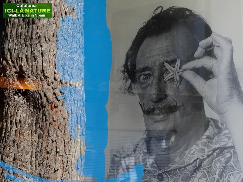 10- WHO IS SALVADOR DALI