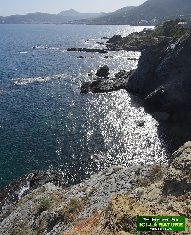 28-walking from collioure to cadaques