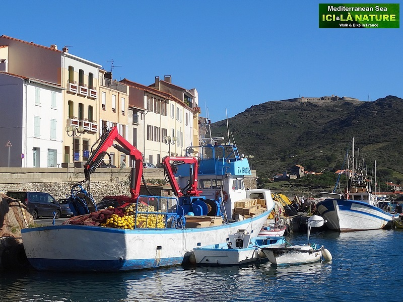 56-port-vendres walking collioure cadaques