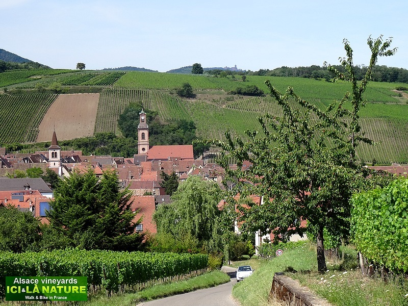 57-hiking alsace randonnee