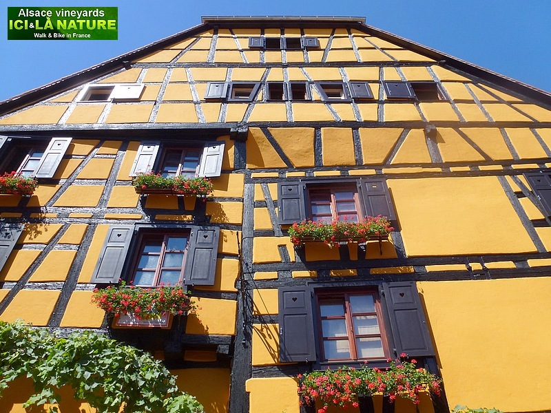 62-most beautiful village in france alsace