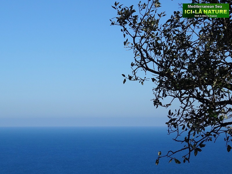 74-mediterranean sea