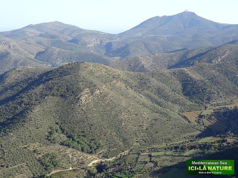 81-trail spanish pyrenees