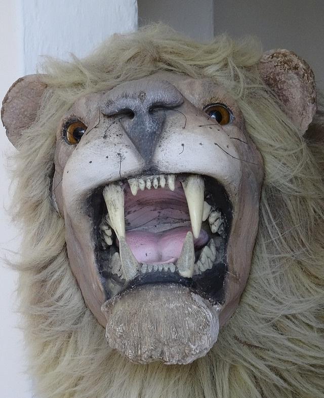 87-lion de dali