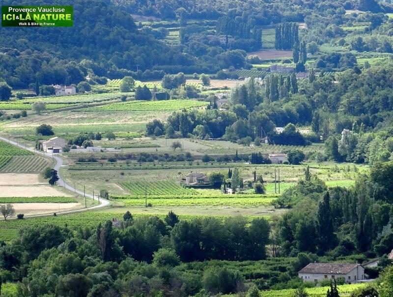 30-provence landscape