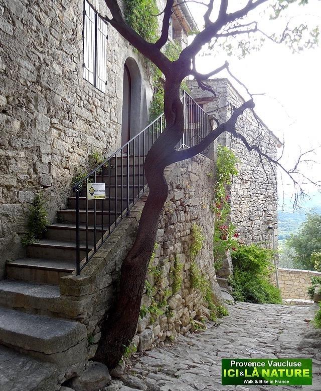 40-old street provence village