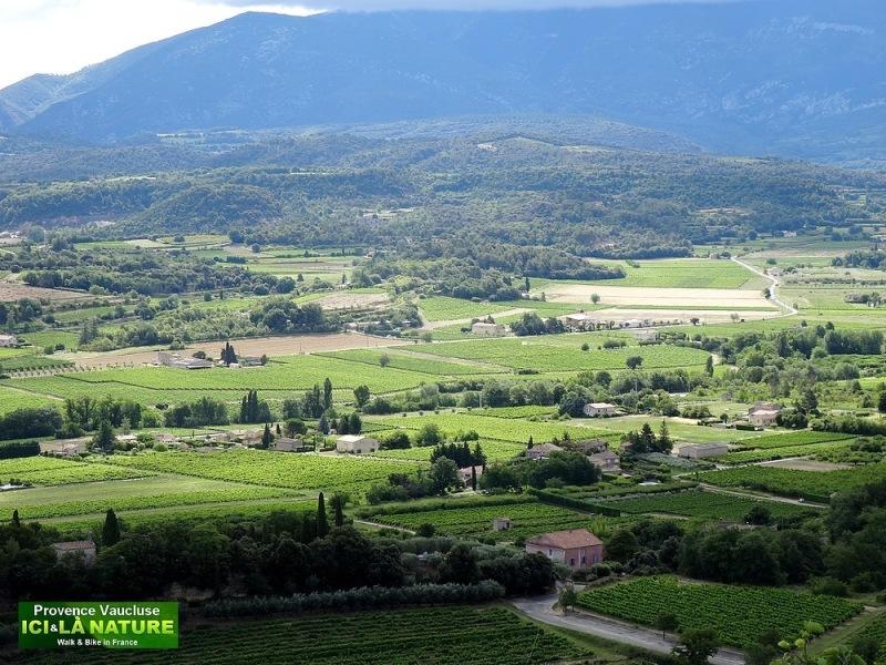 42-paysage de provence vaucluse