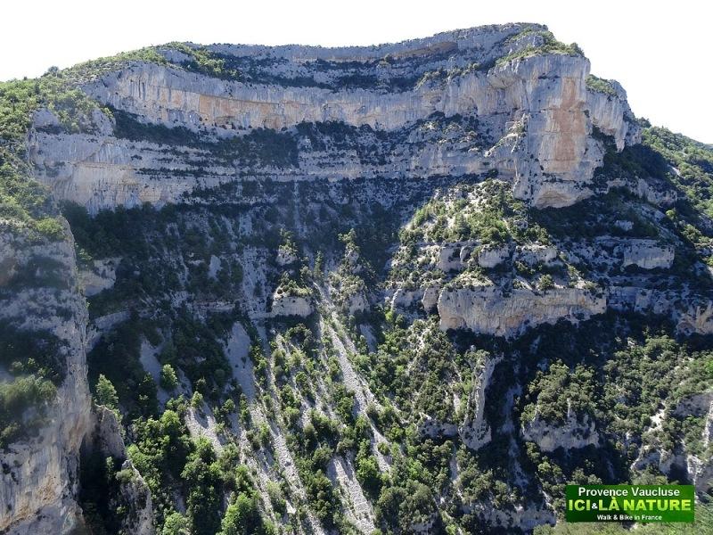 51-gorges de la nesque vaucluse