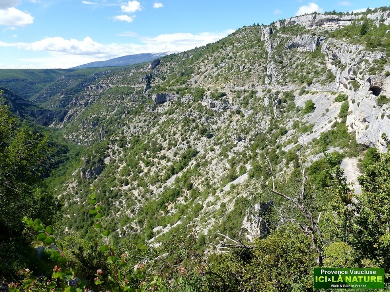 56-gorges de la nesque