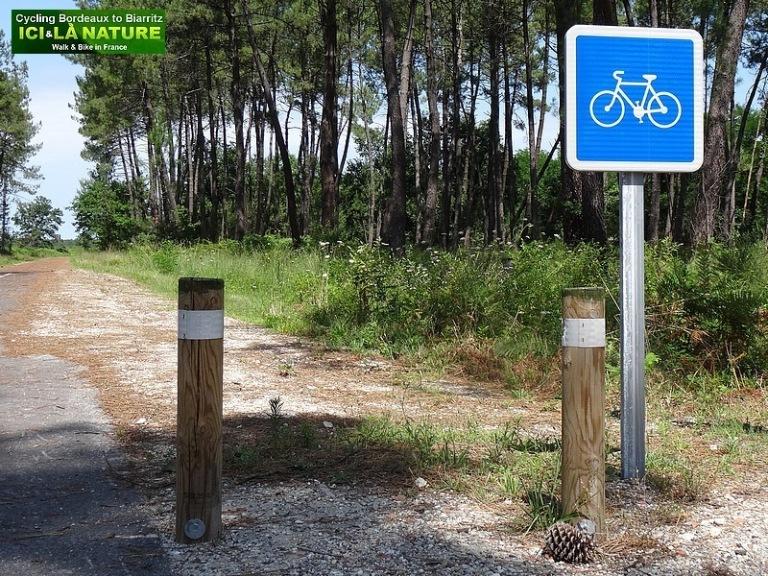 66-faire du vélo dans les Landes
