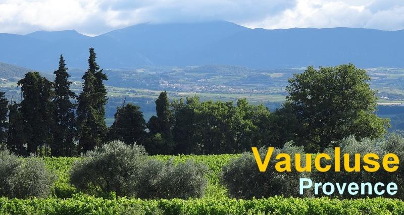 Paysage Provence Vaucluse