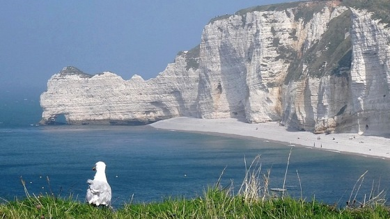 00 normandy cliffs etretat