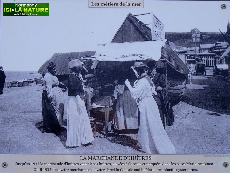 07-normandie vendeuse huitres 1900