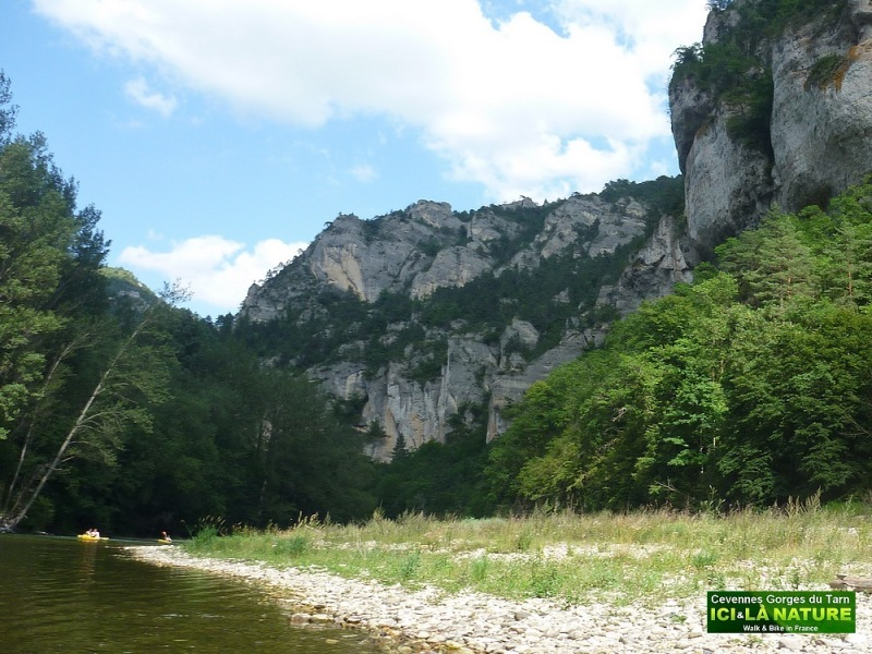 35-wild nature france europe