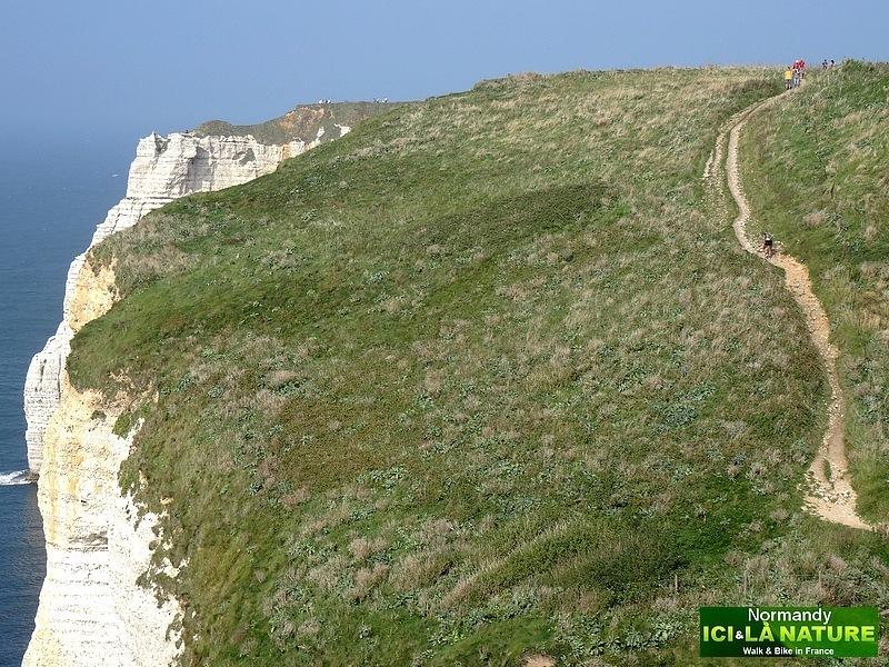 50-chemin des falaises etretat normandy