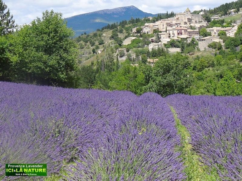 01-walking holidays provence