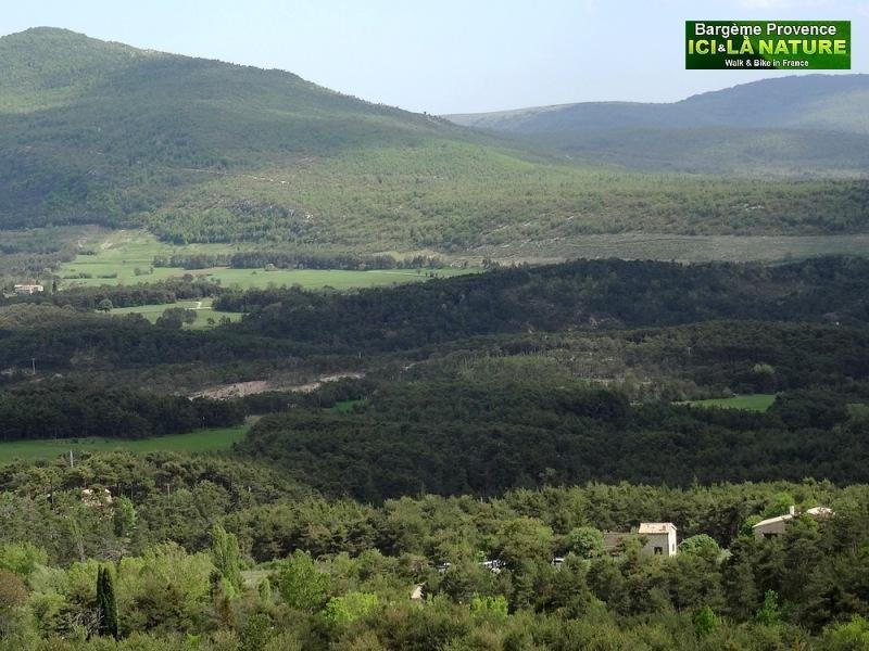 05-paysages de provence