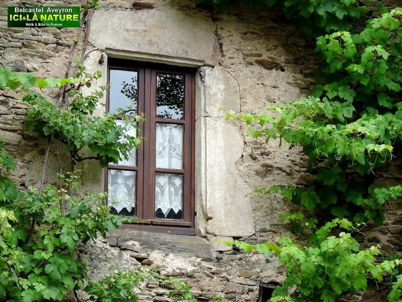 15-pictures of aveyron france