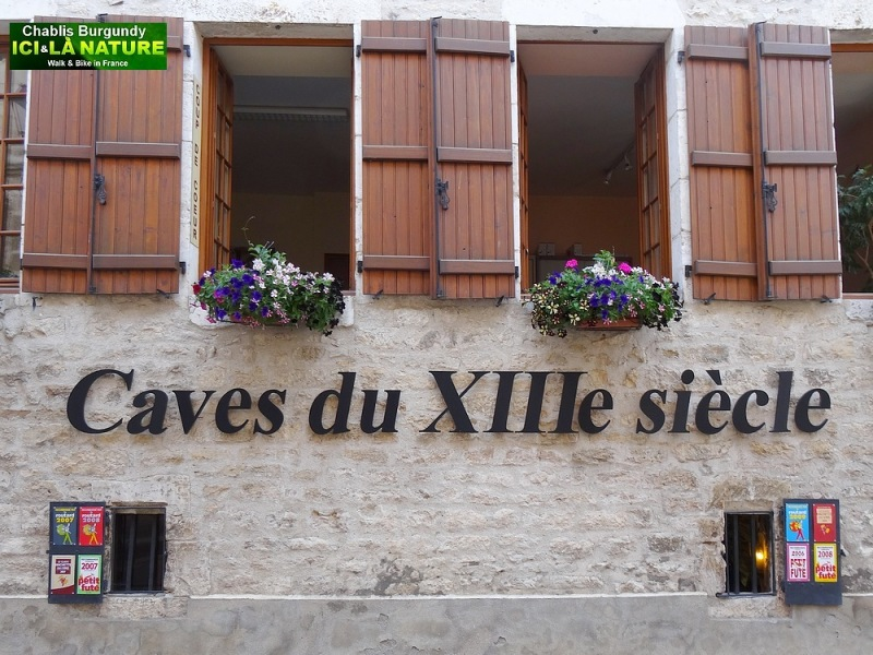 23-vine cellars of the 13 th century chablis france