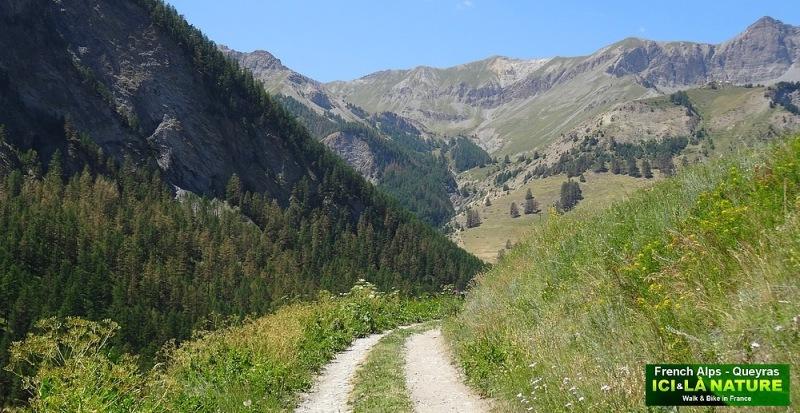 54-alps trekking