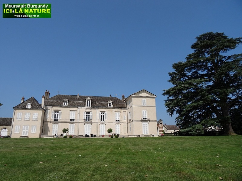 07-burgundy castle chateau meursault