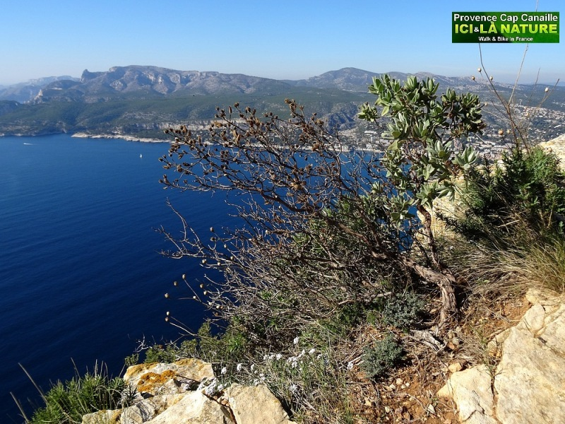 20-top easy hiking trail provence near marseilles