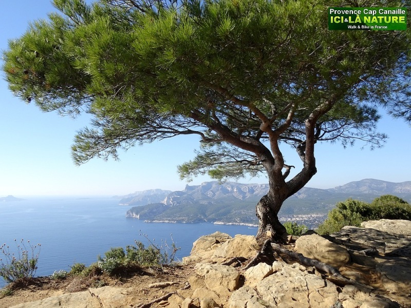 25-best hiking tour in provence