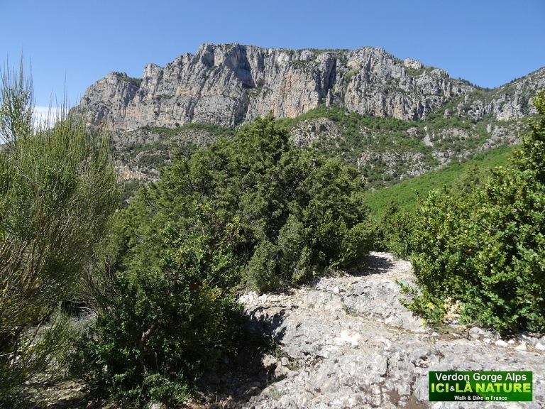 34-cycling alps gorges verdon provence