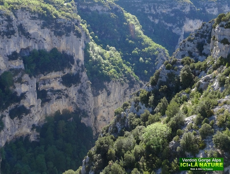 48-alps verdon canyon france