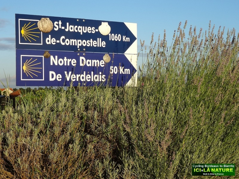 40-way of st james bordeaux