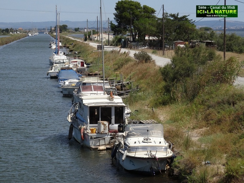 04-cycling along canal du midi