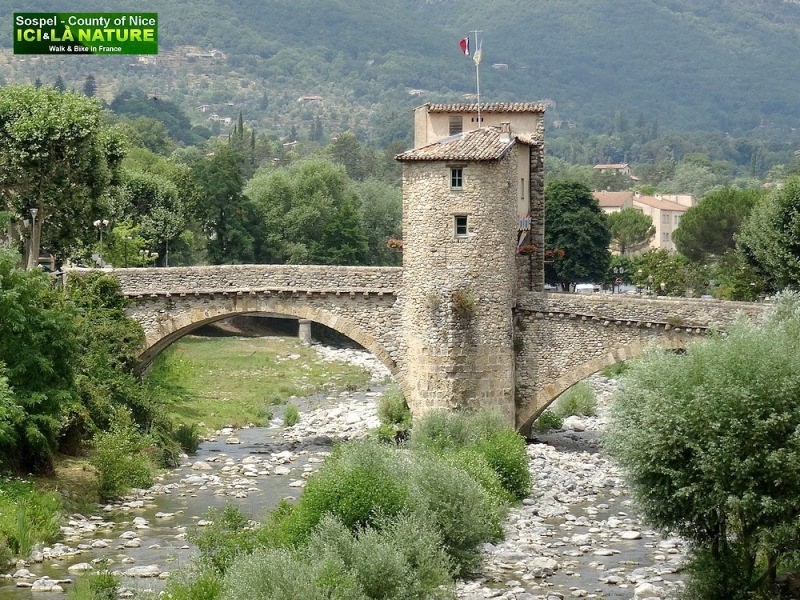 04-OLD ROMAN BRIDGE ALPS PROVENCE
