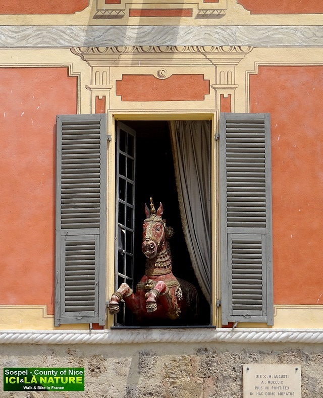 44- cheval fenetre provence