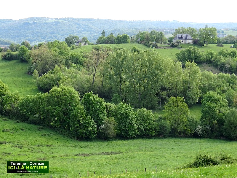 49-paysage landscape rural france