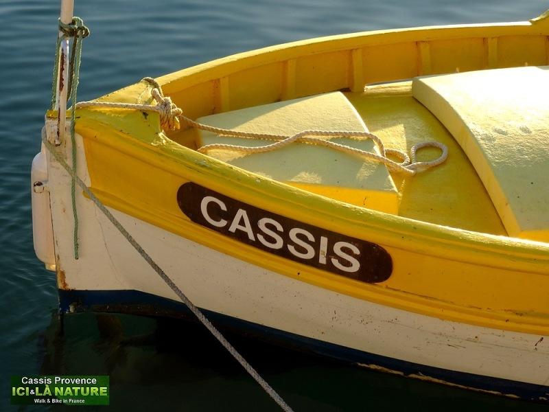 54-cassis