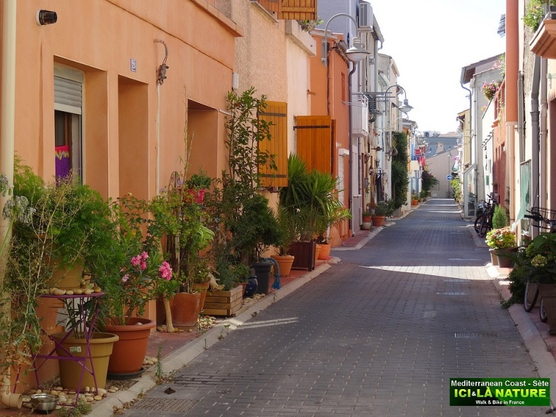 55-STREET IN SOUTH FRANCE