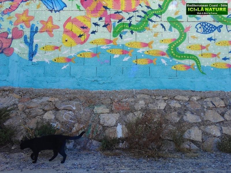 84-STREET ART SETE SUD DE FRANCE