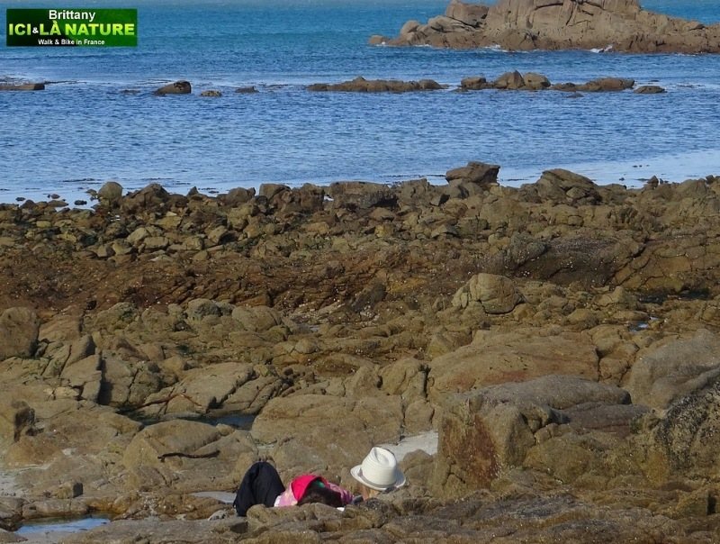 08-brittany walking tour holidays