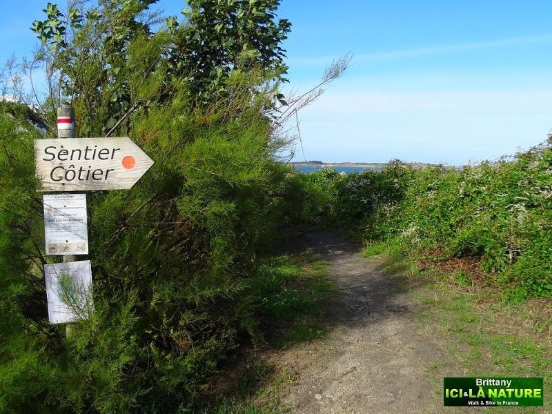 12-walk on coastal path brittany