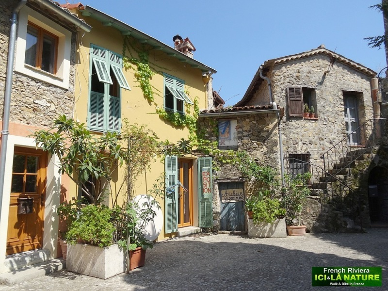 29-houses rental monaco south france