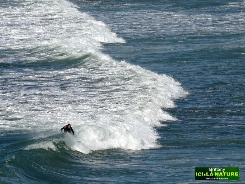 31-surfing in brittany