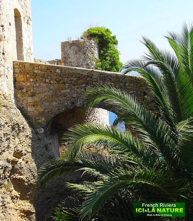 37-chateau grimaldi monaco