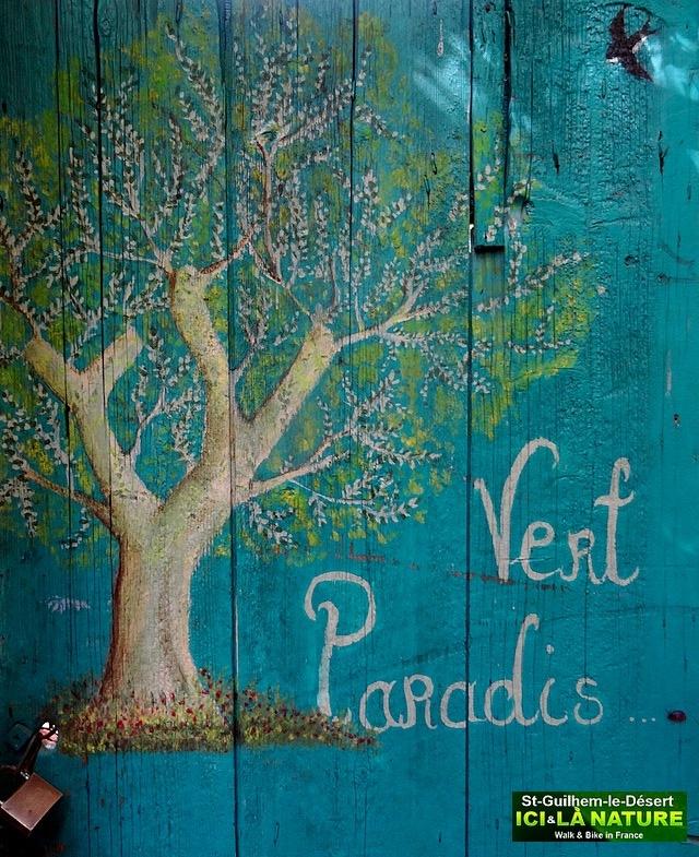 45-GREEN PARADISE PARADIS VERT