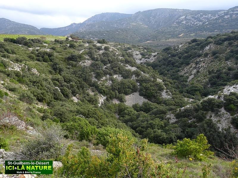 49- route arles via tolosana