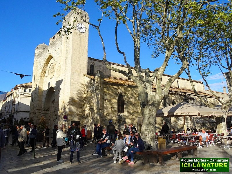 24-travel france provence camargue