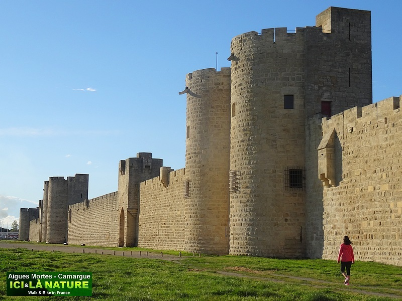 32-forteresse medievale aigues mortes france