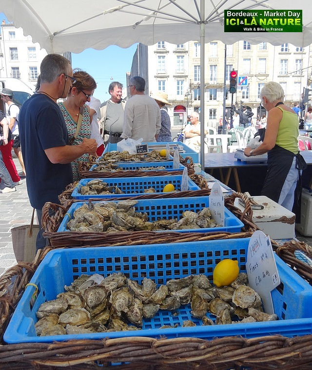 38-MARKET IN BORDEAUX OYSTERS